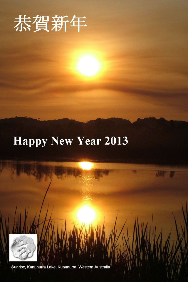 New Year Card 2013 Website