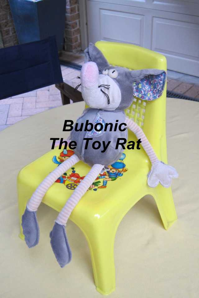 Bubonic The Rat