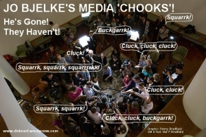 Joes MSM Chooks