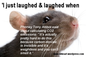 Laughed and laughed CO2