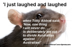 Divisive Rat