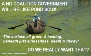 NC Pond Scum