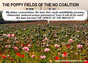NC Poppy Fields