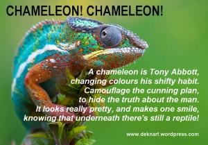 Chameleon Abbott