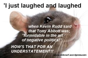 Rat negativity