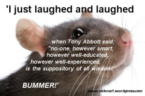 Bummer Rat