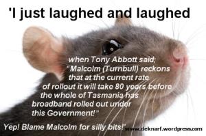 Rat Silly Broadband