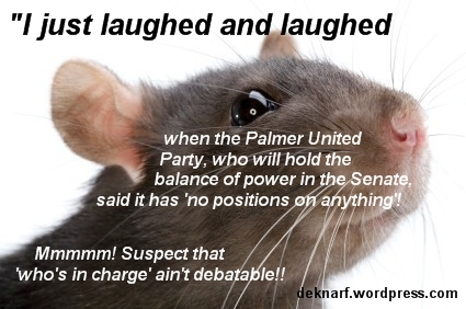 Rat Palmer United