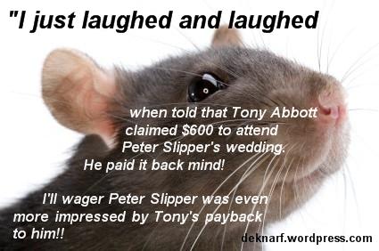 Rat Slipper Payback