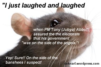 Abbott Angle Rat