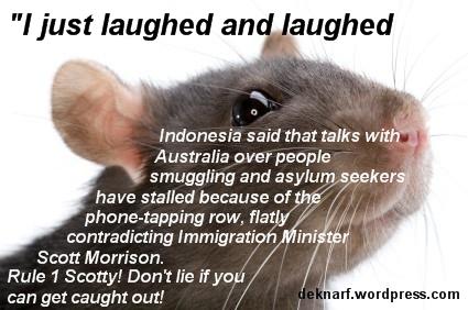 Fibber Morrison Rat