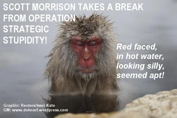Silly Scott Morrison