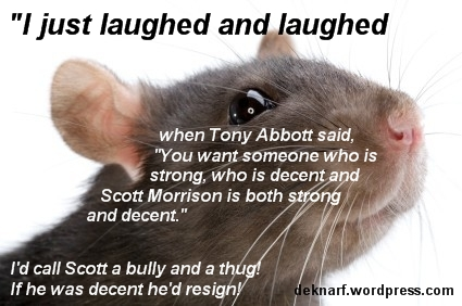 Morrison the Decent Rat