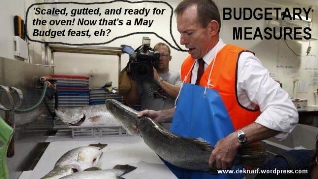 Budget Fishiness
