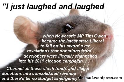 Slush Fund Rat