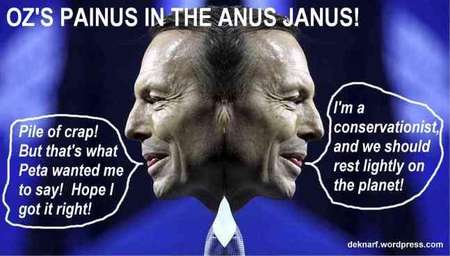 Conservation Abbott
