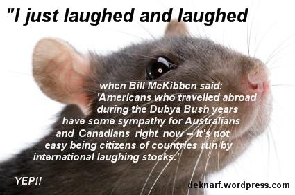 Embarrassed Rat