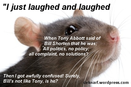 Short On All Rat
