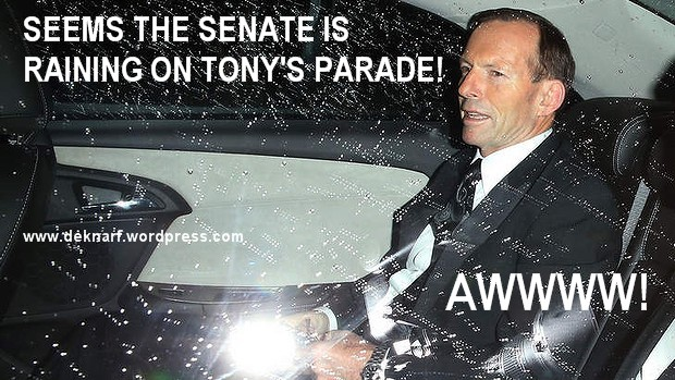 Senate Rain Parade
