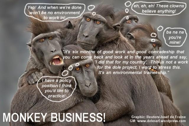 Environment Monkey Business