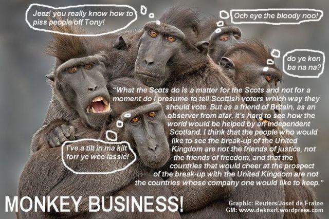 Scottish Monkey Business