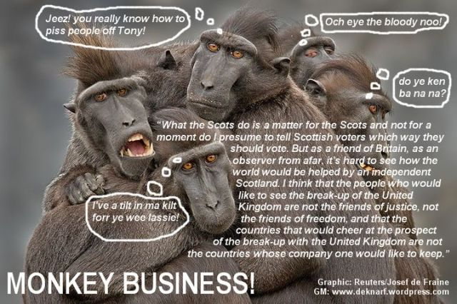 Scottish Monkey Business