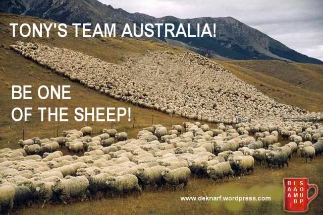 Tonys Team Australia