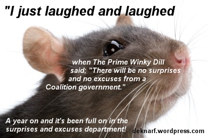 Lying Abbott Rat