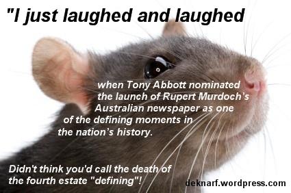 Newspaper Rat