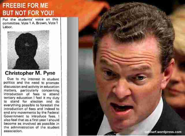 Pyne Swine