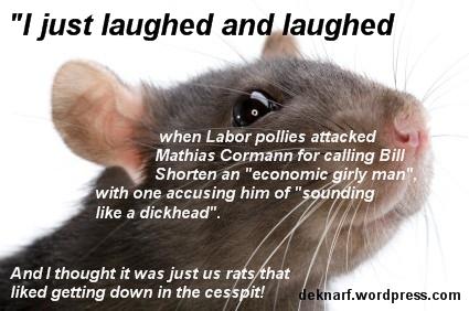 Dickhead Rat