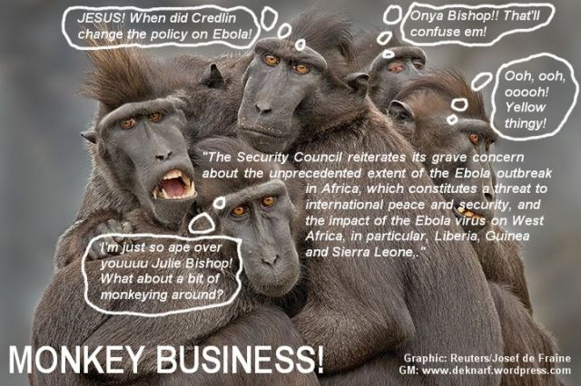 Credible Bishop Monkey