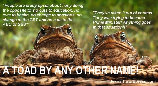 No Cuts Toad