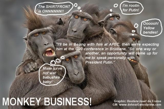 Shirtfront Monkey