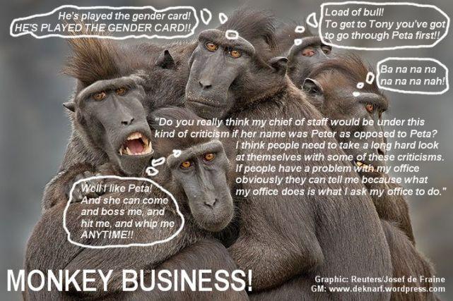 Credline Monkey Business