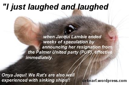 Lambie PUP Rat