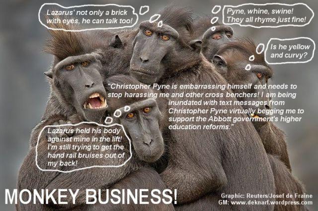Lazarus Pyne Monkeys
