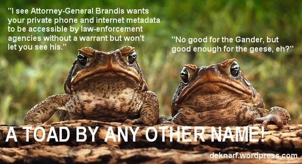 Metadata Toads