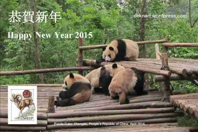 New Year Card 2015a
