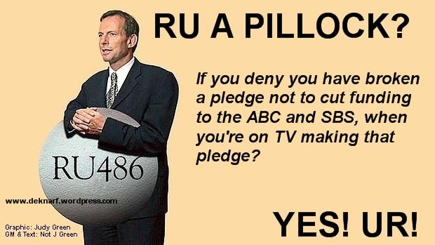 Pledge Denial Pillock