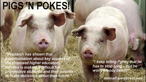 Education Pigs