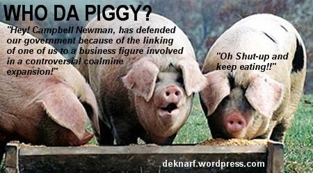 LNP Pigs