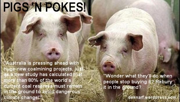 Quandary Pigs