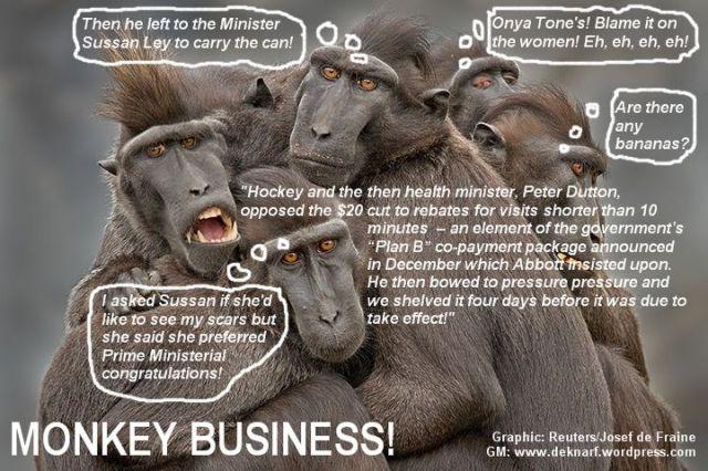 Unhealthy Monkeys