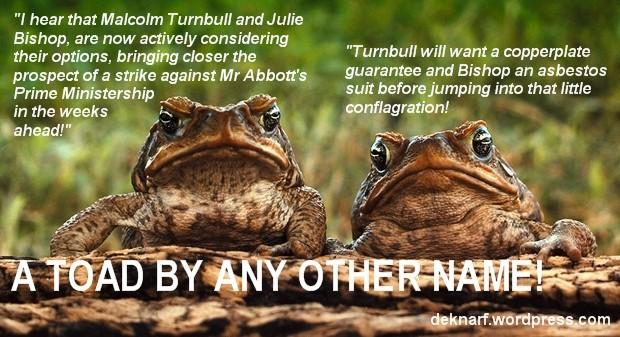 Abbott Ruction Toads