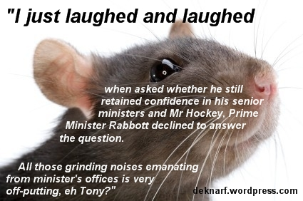 Confident Abbott Rat