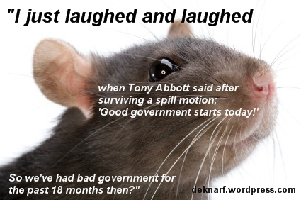Good Govt Rat