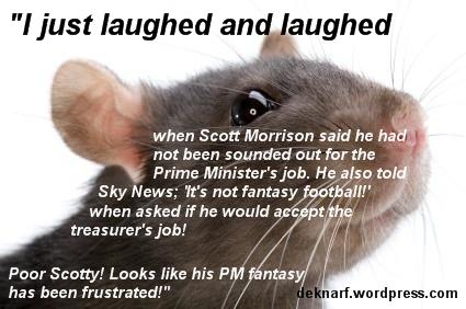 Morrison PM Rat