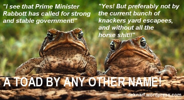 Stable Govt Toads
