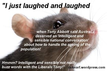 Conversation Rat